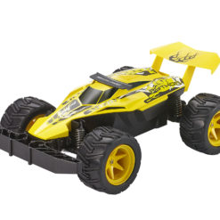 24807 - Buggy Python